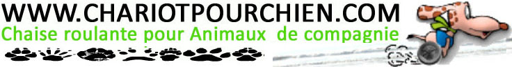 http://www.chariotpourchien.com/images/logo-chariot_mod.jpg